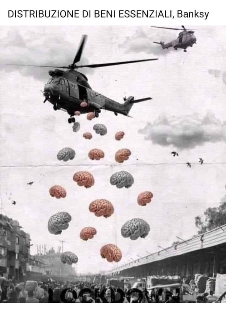 bansky cervelli